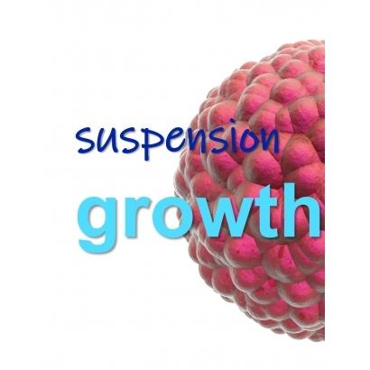 Suspension Growth.jpg